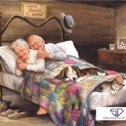Ældre ægtepar sover i seng