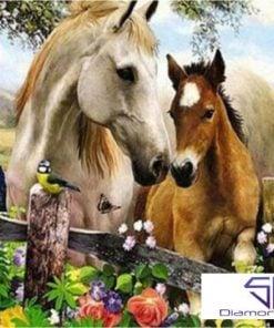 2 heste - Diamond Paint