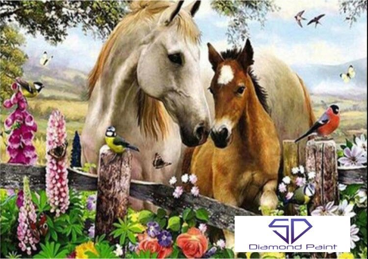 Image of 2 heste