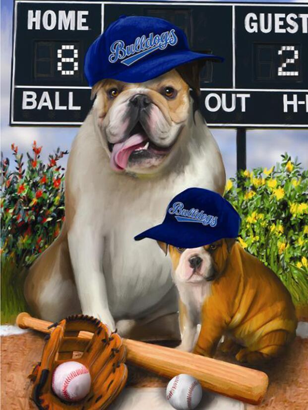 Image of Baseball hunde
