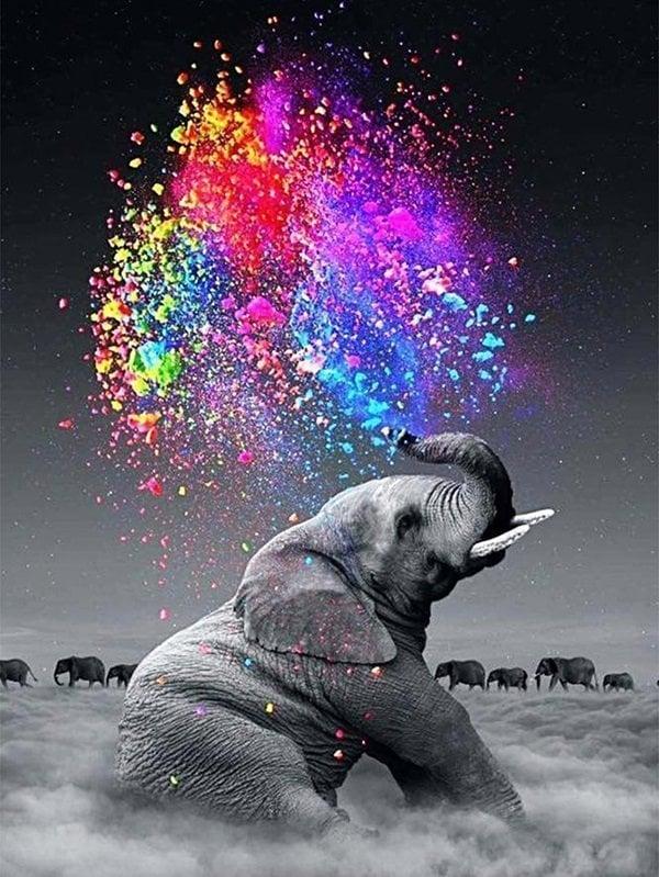 Image of Elefant sprøjter farver