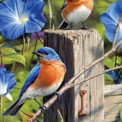 2 fugle med blå blomster -Diamond Paint