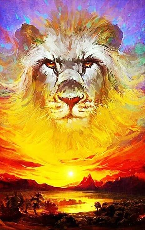 Løve over solnedgang thumbnail