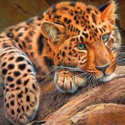 Leopard - diamond paint