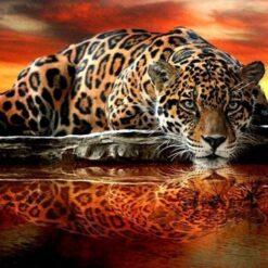 Leopard ved vand - diamond paint