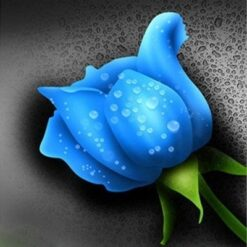 Blå rose - Diamond Paint