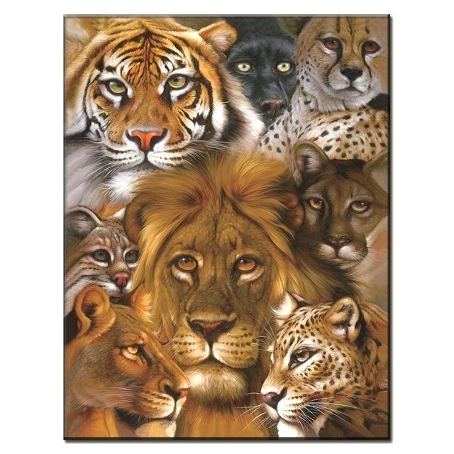Image of Diverse kattedyr