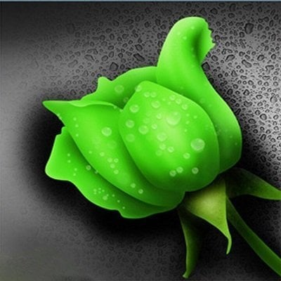 Grøn rose thumbnail