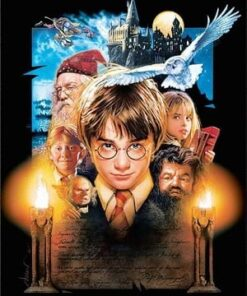 Harry Potter med venner - Diamond paint