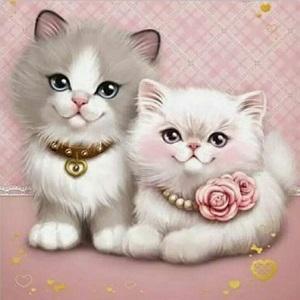 Image of 2 sma%CC%8A kattekillinger