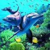 Delfiner - Diamond Paint