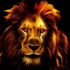 Løve på sort baggrund - Diamond Paint