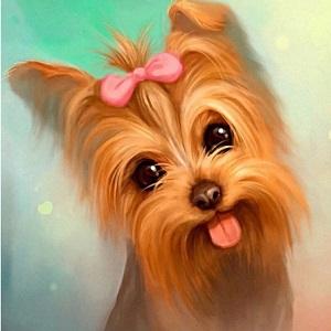 Lille hund - Diamond Paint