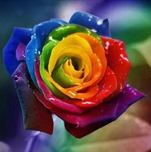 Diamond Painting - Rose i mange farver thumbnail