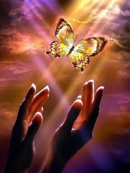 Hænder og sommerfugl mod himlen i diamond paint