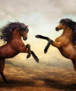 2 brune heste - diamond paint