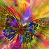 Farverig sommerfugl - diamond paint
