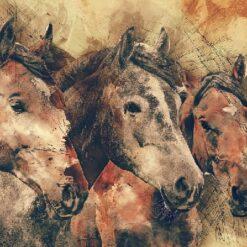 3 heste i tegnet look - diamond paint