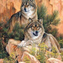 2 ulve på sten i diamond paint