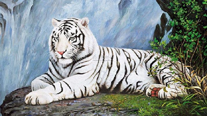 Diamond Painting - Hvid tiger på klippe thumbnail