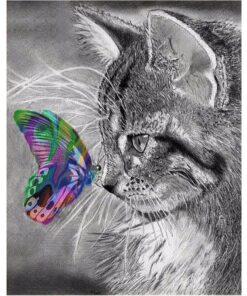 Kat og sommerfugl i diamond paint