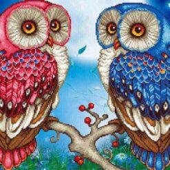 Rød og blå ugle