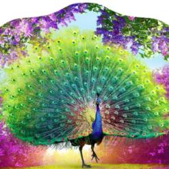 3D-billede af påfugl