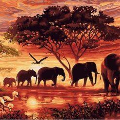 Elefanter på savannen i diamond paint