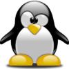 Skør pingvin i diamond paint