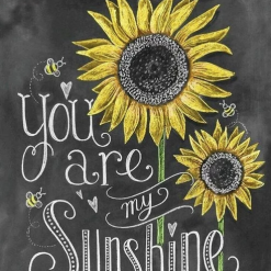 You are my sunshine - diamond paint