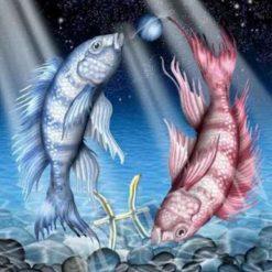Stjernetegn 2 - Fisken i diamond paint
