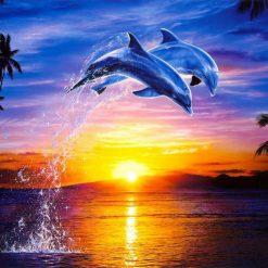 Springende delfiner i diamond paint