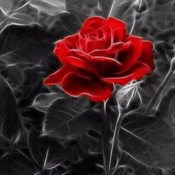 Rød rose med sort/hvid baggrund i diamond paint