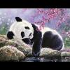 Sovende panda i diamond paint