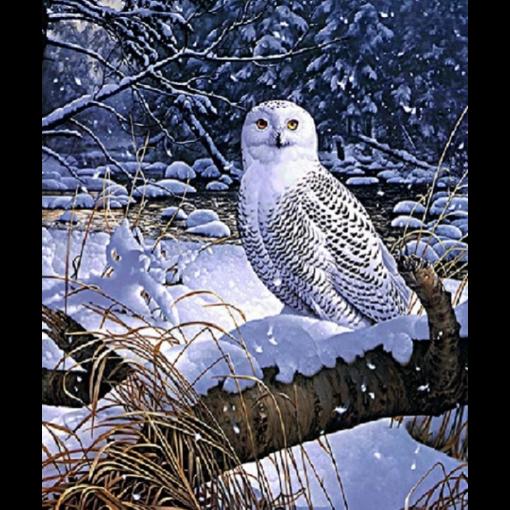 Ugle i sneen i diamond paint